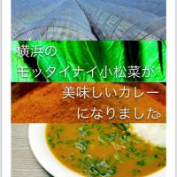 エシカルグリーンカレー2